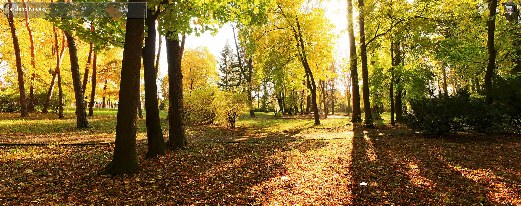 Park Nováky 1